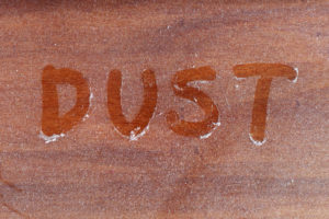 Maid in America dusts furniture