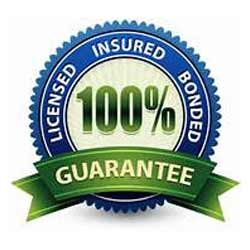 new-lic-ins-guarantee